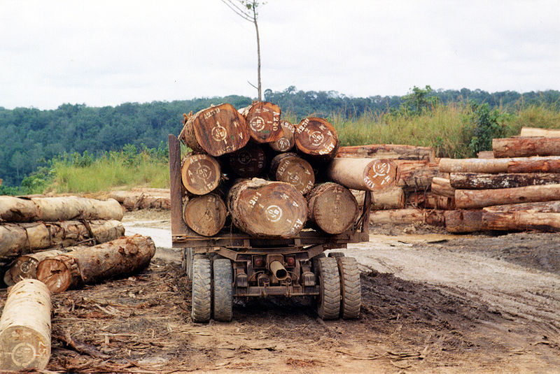 agreement-reached-regarding-car-wood-imports IMG