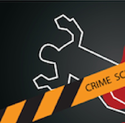 crimes-committed-and-solved-facebook-infographic IMG