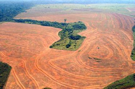 eu-green-week-special-deforestation-and-forest-degredation IMG