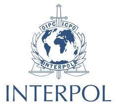 interpol-2-million-commission-fight-wildlife-crime IMG