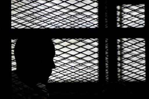 egypt-court-sentences-prominent-activist-15-years-jail IMG