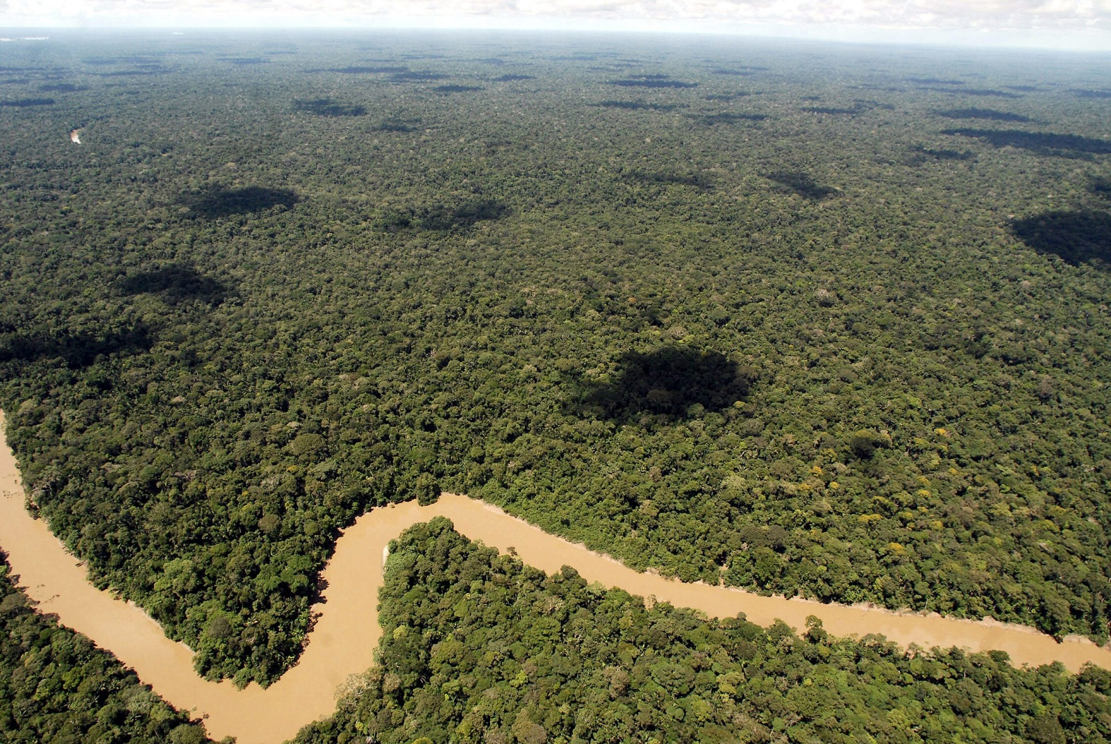 A photograph made available on 04 October 2013 shows the river Tiputini as it passes by the northern border of Yasuni National Park in Ecuador, 16 May 2007. The Ecuadoran Congress approved on 03 October 2013 new drilling for oil development and accompanying roads in the remote northeast section of Yasuni National Park, a 900,000 hectare Amazon forest which is considered one of the most biodiverse areas in the world.