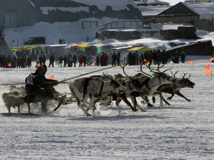 epa03158419 Participants compete in a raindeer race during the 'Buran-Dei' sports festival in  Naryan-Mar, Nenets autonomy, Arkhangelsk region, Russia, 25 March 2012. 'Buran-Dei' is an annual sports festival of Nenets autonomy district in the north of Arkhangelsk region.  EPA/ANATOLY MALTSEV