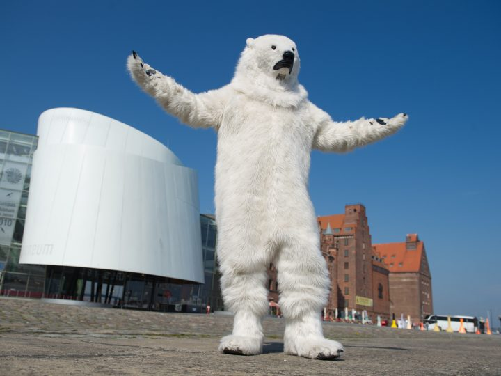 epa04175835 A Greenpeace activist in a Polar bear costume demonstrates for the protection of the Arctic in front of the Ozeaneum in Stralsund, Germany, 22 April 2014. Greenpeace campaigns against oil production by Gazprom in the Arctic Ocean at Museum Ozeaneum.  EPA/STEFAN SAUER