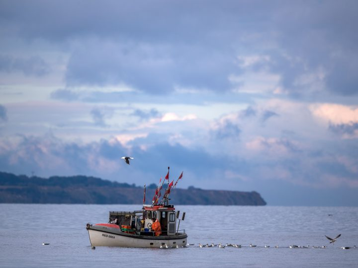 epa05579728 A fishing boat pulling nets on the Baltic Sea in Timmendorf, Germany, 10 October 2016. The EU ministers for fisheries will cease fishing of the Baltic Sea in the coming year. As the stocks at codfish are in a very bad condition, the EU Commission proposed a reduction of the quota by 88 percent in the western Baltic Sea. German fishermen fear their existence.  EPA/JENS BUETTNER