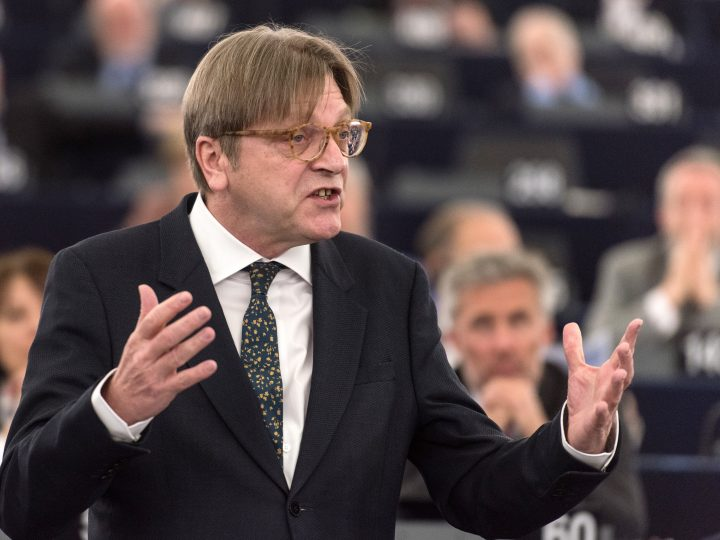 epa05889513 Guy Verhofstadt, leader of the ALDE Liberal group at the European Parliament, delivers her speech using sign language during a meeting of the European Parliament in Strasbourg, France, 05 April 2017. The parliament is holding a key debate on Brexit negotiations.  EPA/PATRICK SEEGER