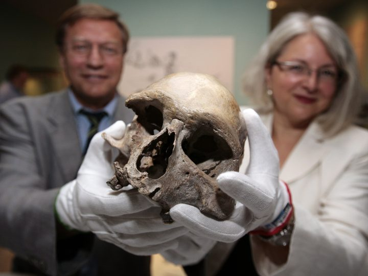 epa01803946 Harry Voigtsberger (L), director of the LVR state museum, and  head of the cultural department, Milena Karabaic, pose with a skull of a ice age man in Bonn, Germany, 23 July 2009. Scientists perform computer tomographs, isotope analysis, genetic examination and examine the bones of the skeletons of two 14,000-years-old ice age hunters to learn about diseases, hereditary factors and nutrition behaviour. The skeletons were discovered in 1914 and are one of Europe's most important prehistoric human discoveries.  EPA/DAVID EBENER