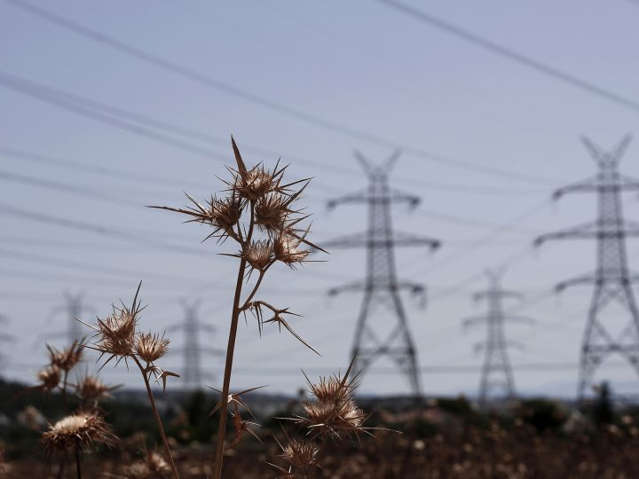 epa04302295 Thistles grow in front of electricity pylons of the Greek Public Power Corporation (PPC) outside an electric power station in Athens, Greece, 06 July 2014.  The strike of PPC employees' union GENOP is scheduled to end in a few hours' time - expected on 06 July at Midnight - when the vast majority of the individual requisition documents will have been handed by the authorities to PPC employees, following the decision of the government on 05 July for the political mobilization of PPC employees and the requisition of their services. Buildings, as well as a variety of PPC facilities, have already been requisitioned.  EPA/YANNIS KOLESIDIS