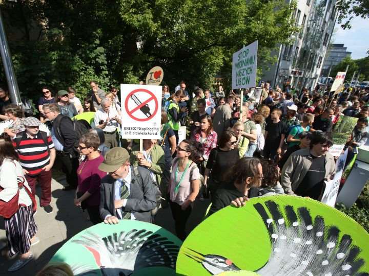 epa06065679 People take part in a demonstration organized by 'I love Bialowieza Forest' organization under the slogan 'UNESCO! Stop the cut of the Bialowieza Forest!' in front of the ICE Krakow Congress Centre, in Krakow, Poland, 04 July 2017, where the 41st session of the UNESCO World Heritage Committee takes place. The protesters want to draw attention on the increased timber harvesting in the forest. The Bialowieza Forest is the only natural heritage site in Poland listed on the UNESCO World Heritage List. At the next meeting of the UNESCO Committee in 2018, the Bialowieza Forest may be added on the list of World Heritage in Danger.  EPA/Stanislaw Rozpedzik POLAND OUT