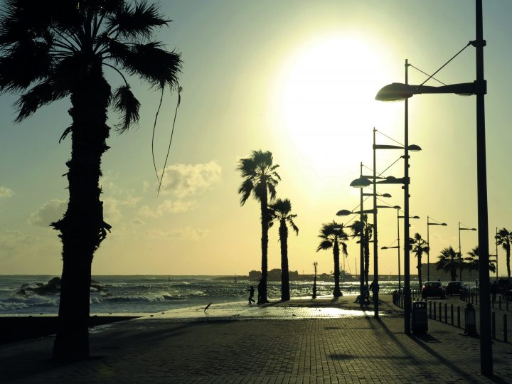epa05650925 A picture made available on 28 November 2016 shows a view of the harbour in Pafos, Cyprus, 15 February 2009. From January 2017, the city of Pafos will be hosting the title of the European Capital of Culture 2017. It shares the title with Aarhus in Denmark.  EPA/CONSTANTINOS LARKOS