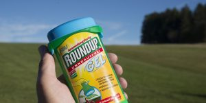 epa06272821 The controversial herbicide Roundup, which contains glyphosate, pictured in a garden in Hoechenschwand, Germany, 18 October 2017. Roundup is manufactured by the Monsanto company in St. Louis, USA. Germany's chemical and pharmaceutical company Bayer intends to acquire Monsanto Corporation.  EPA-EFE/STEFFEN SCHMIDT