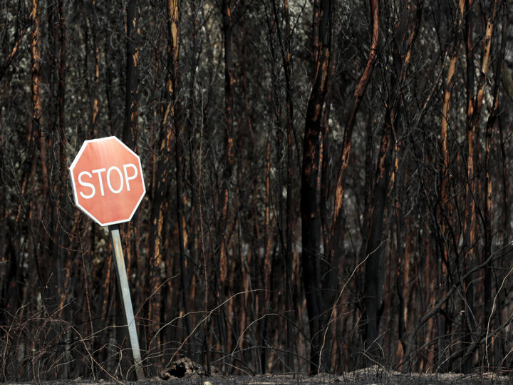 epaselect epa06938098 A view on a STOP sign in the areas ravaged by the forest fire in the Monchique area, Brejo, Algarve south of Portugal, 09 August 2018. Reports state that around 1492 firefighters, 465 vehicles and 13 airplane are fighting the current fires affecting Portugal.  EPA-EFE/FILIPE FARINHA