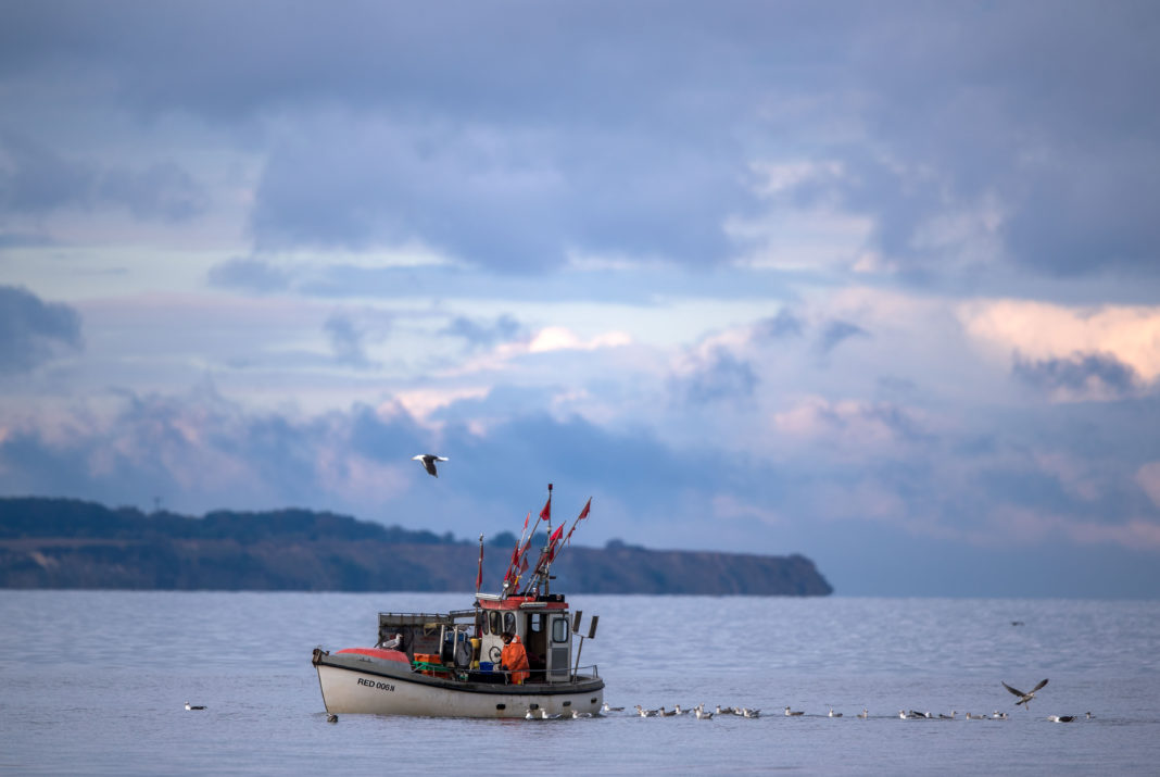 EU sets fishing limits for the Baltic Sea